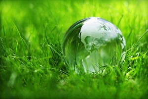 Glass globe in the grass concept for environment and conservation